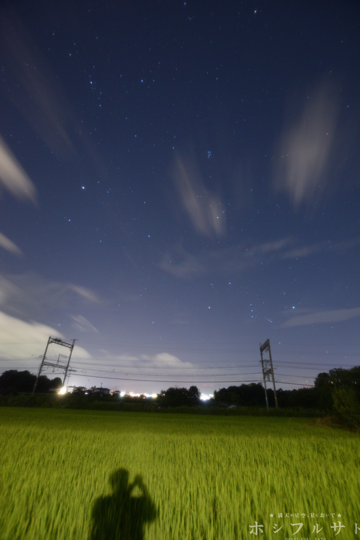 ペルセウス流星群の流れ星を見たくて祈る