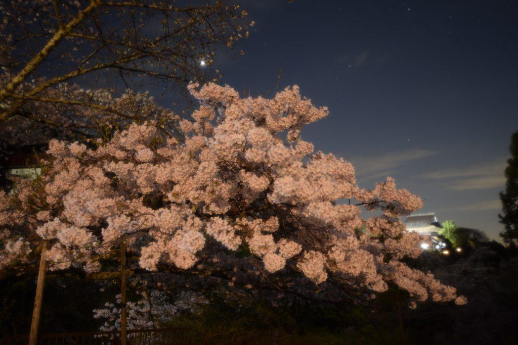 吉水神社の参道から金峯山寺を望む