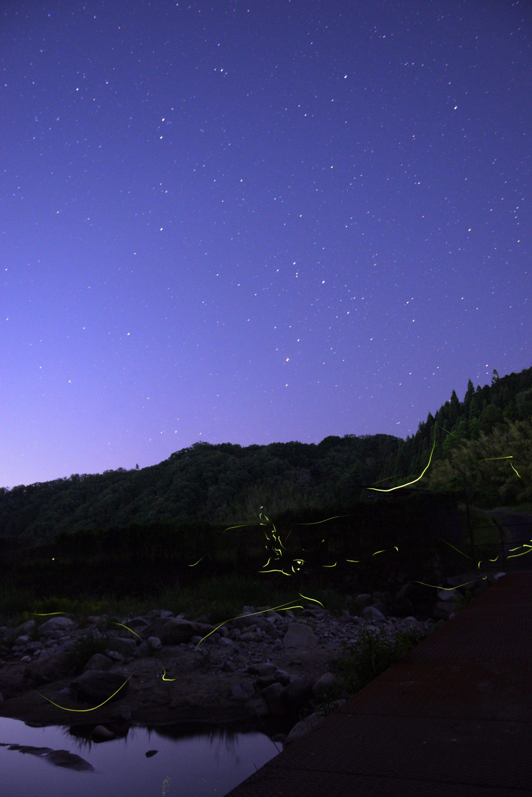 山添村にてホタルと星空
